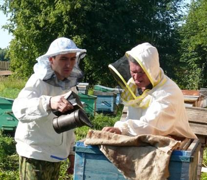 агрофраншиза пчеловодства