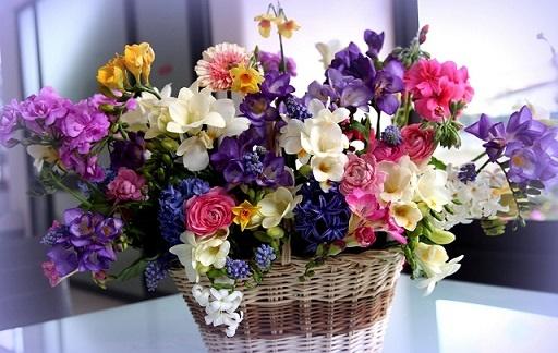 Франшиза цветочного магазина: стоимость и условия